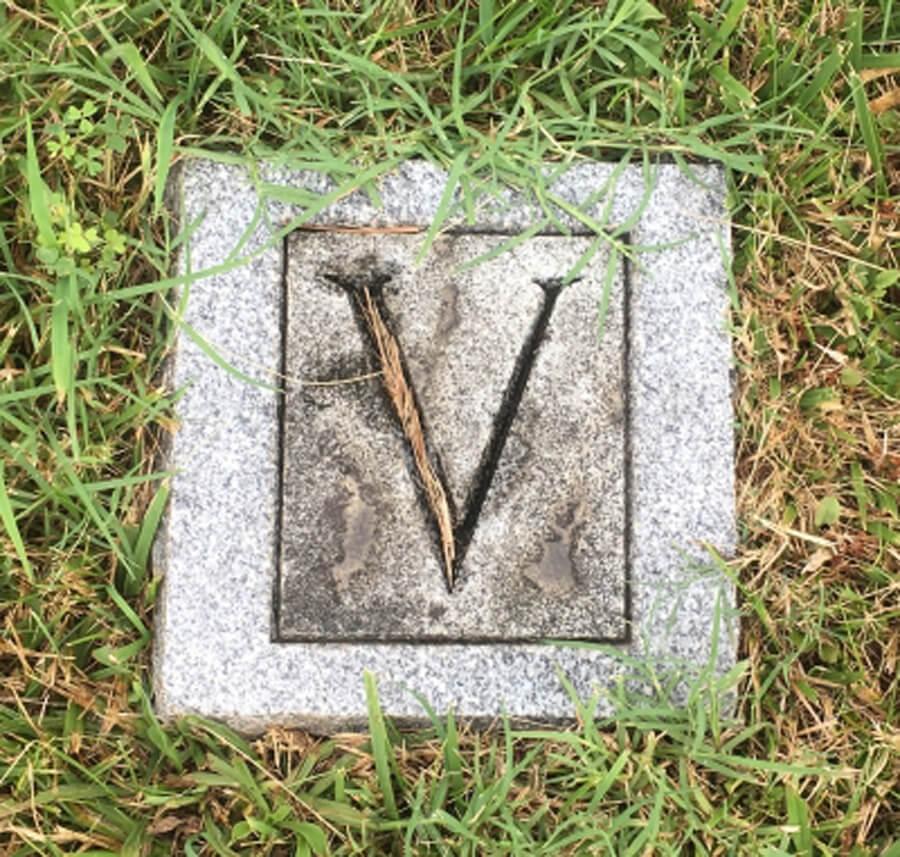 Hopkins, Vaughan