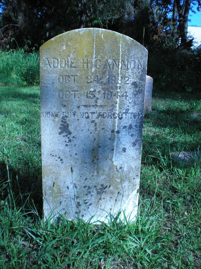 Addie H. Cannon