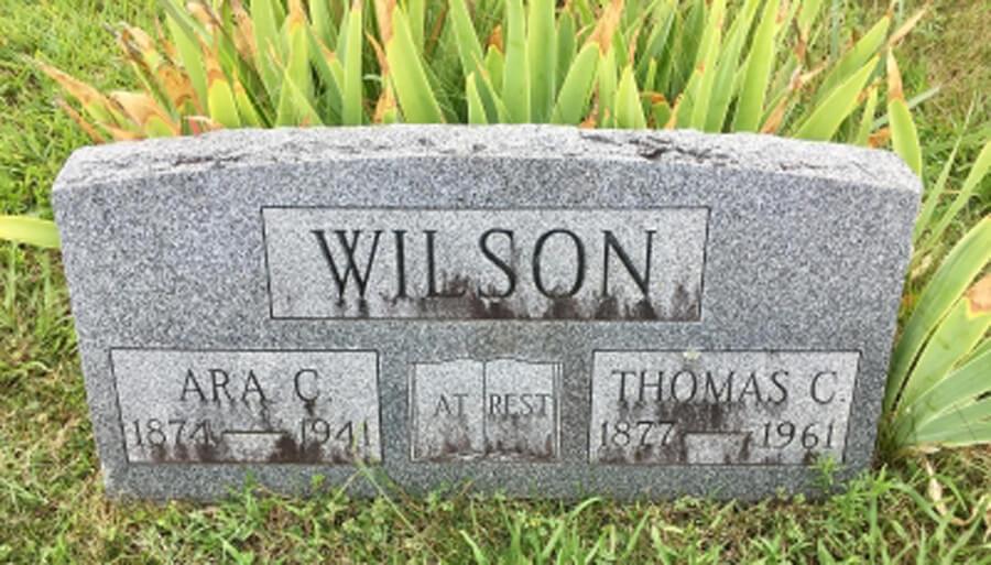 Ara C. Wilson